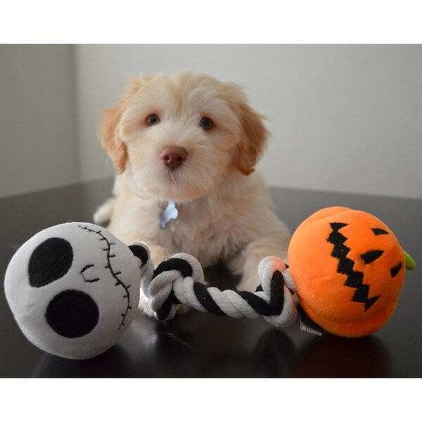 disney nightmare before christmas jack skellington pumpkin king rope tug chew dog toy with built
