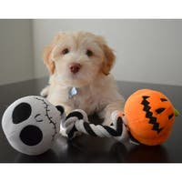 Disney Nightmare Before Christmas Jack Skellington Pumpkin King Rope Tug Chew Dog Toy with Built-in Squeakers