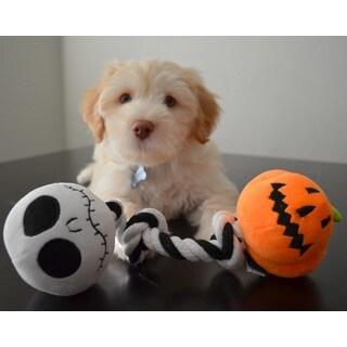 Disney Nightmare Before Christmas Jack Skellington Pumpkin King Rope Tug Chew Dog Toy with Built-in Squeakers