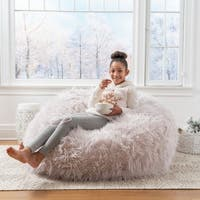 Lachlan Faux Furry Bean Bag by Christopher Knight Home