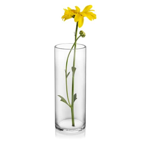 Libbey Cylinder Vase, 15-inch, Set of 2