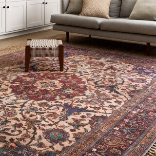 Lina Distressed Multi Rug (2'3 x 3'9)