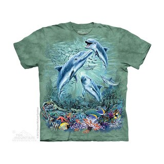 THE MOUNTAIN FIND 12 DOLPHINS YOUTH T-SHIRT