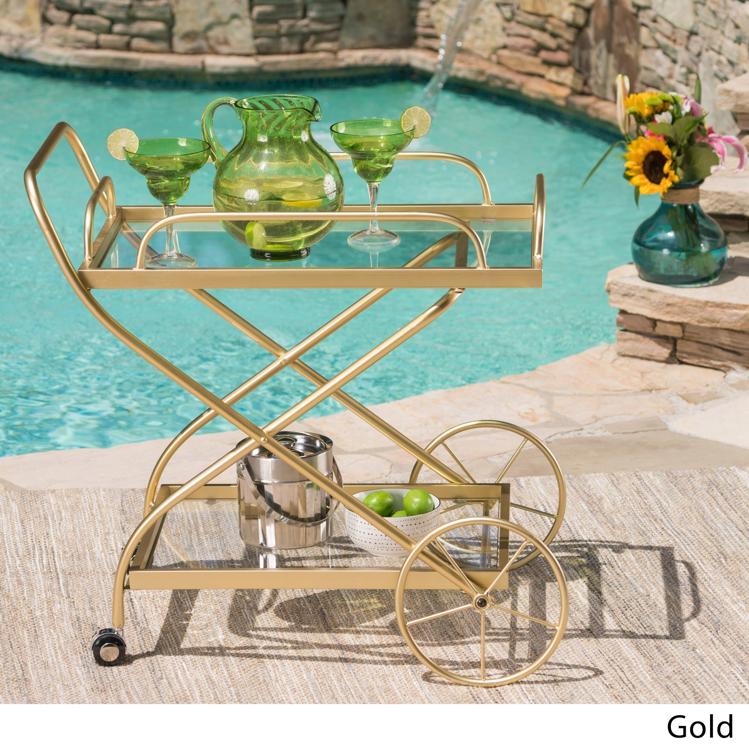 Indio Outdoor Traditional Iron Glass Bar Cart with Shelves by ...