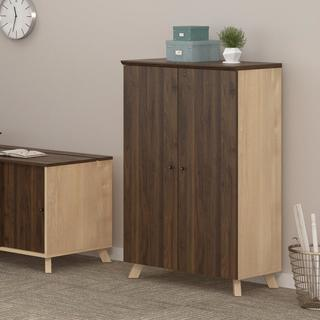 Ameriwood AX1 Walnut Storage Cabinet