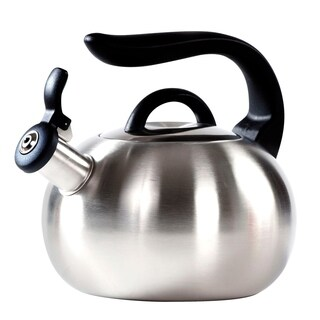 Modern Stainless Steel Tea Kettle 2.7 L Stove Top Whistling Kettle (Silver)