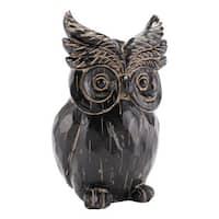 Black Owl Black