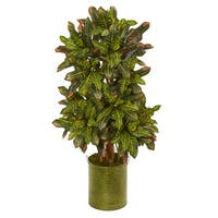 3.5' Croton Artificial Plant in Green Tin Planter