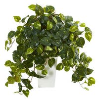 shop faux english ivy plant in glass vase on sale free shipping today 11736143. Black Bedroom Furniture Sets. Home Design Ideas
