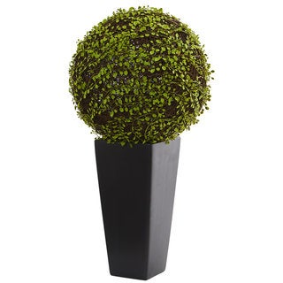 Link to Mohlenbechia Ball Artificial Plant in Black Tower Vase Similar Items in Decorative Accessories