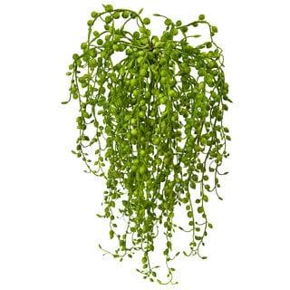 Senecio Artificial Succulent (Set of 3)