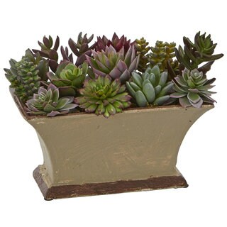 Mixed Succulent Artificial Plant in Vase
