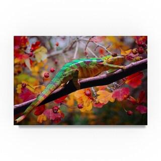 Ata Alishahi 'Chameleons' Canvas Art