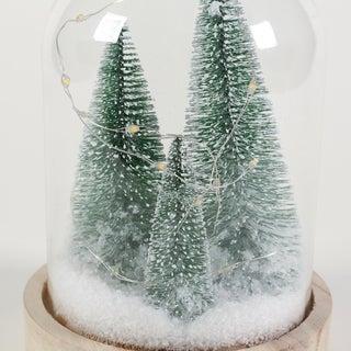 LED Tree Glass Dome