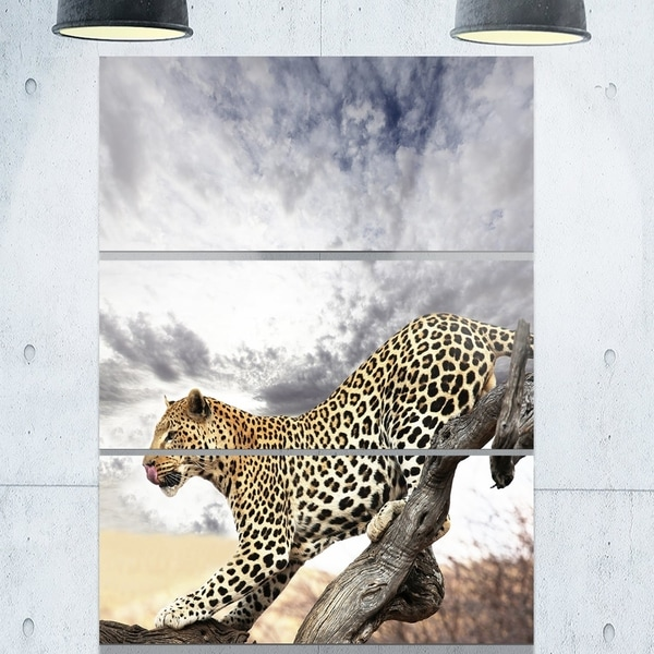 Designart u0026#x27;Leopard Taking Rest on Tree Trunksu0026#x27; Extra Large  sc 1 st  Overstock & Shop Designart u0027Leopard Taking Rest on Tree Trunksu0027 Extra Large ...