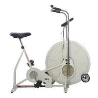 Ross Futura Pro 955 Fan Exercise Bike