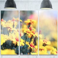 Designart 'Pale Yellow Marigold Flowers' Extra Large Floral Glossy Metal Wall Art