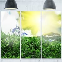 Designart 'Sunny Meadow with Green Grass' Extra Large Landscape Glossy Metal Wall Art