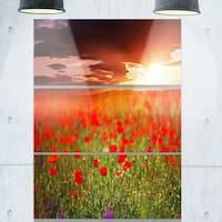 Designart 'Wild Poppy Flowers At Cloudy Sunset' Large Flower Metal Wall Art