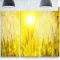 Designart 'Yellow Grass Flower at Sunset' Landscape Glossy Metal Wall Art
