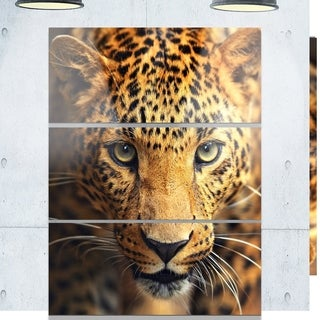 Designart U0027Leopard Face Close Upu0027 Animal Metal ...