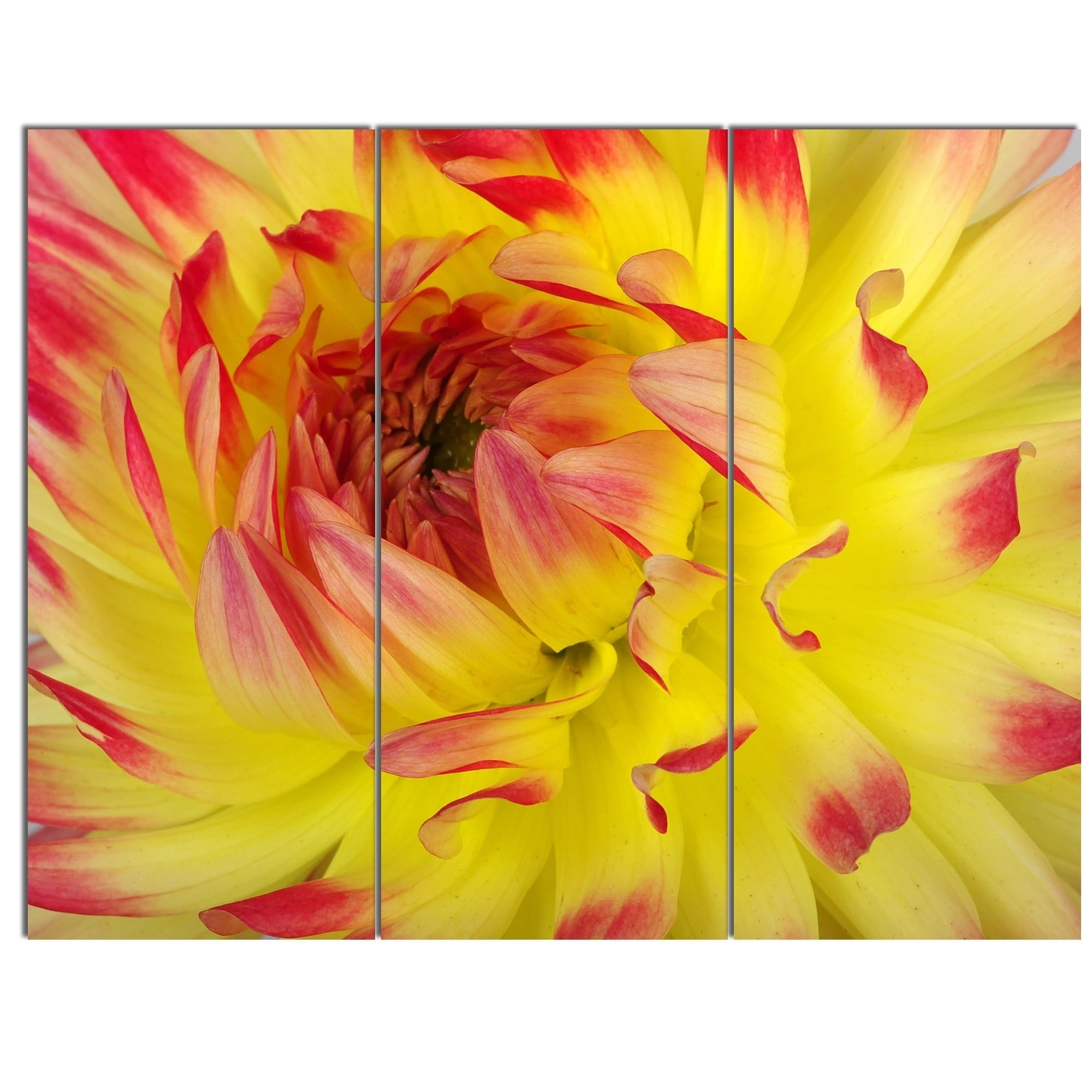 Generous Floral Metal Wall Art Decor Photos - The Wall Art ...