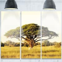 Designart 'Acacia Tree on African Plain' Oversized African Landscape Glossy Metal Wall Art