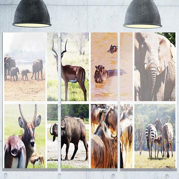 Designart \'Rich African Wildlife Collage\' Animal Glossy Metal Wall ...