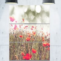 Designart 'Red Poppy Flowers Meadow' Extra Large Floral Glossy Metal Wall Art