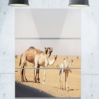 Designart 'Camels in Sunny Sahara Desert' Extra Large Animal Metal Wall Art