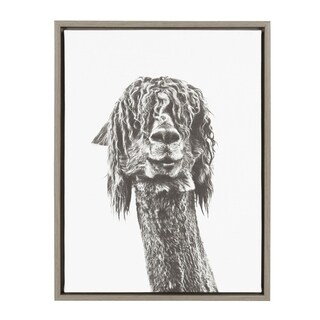 Kate and Laurel Sylvie Curly Hair Alpaca Portrait 18x24 Gray Framed Canvas Wall Art by Simon Te Tai