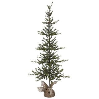 Pine Tree - 5'