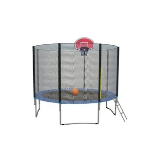 10FT Round Trampoline with Basketball Hoop Safety Enclosure Pad Ladder