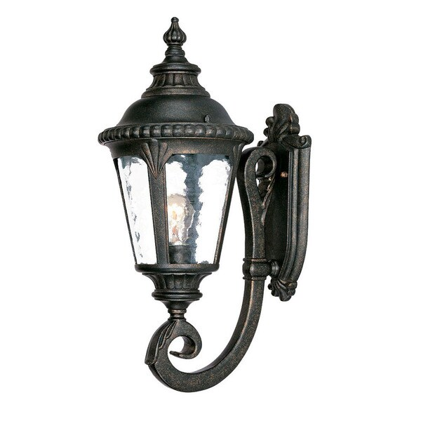 Acclaim Lighting Surrey Collection 1 Light Outdoor Black Gold Wall