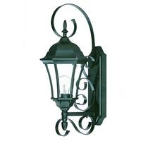 Acclaim Lighting New Orleans Collection 1-Light Outdoor Matte Black Wall Light