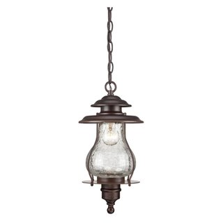 Acclaim Lighting Blue Ridge Collection Hanging Lantern 1-Light Outdoor Architectural Bronze Light Fixture
