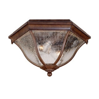 Acclaim Lighting Flushmount Collection Ceiling-Mount 2-Light Outdoor Burled Walnut Light Fixture