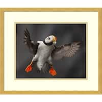 Framed Art Print 'Full Flaps ' by Alfred Forns 20 x 17-inch