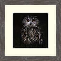 Framed Art Print 'Prince Of The Night' by Martine Benezech 21 x 21-inch