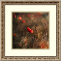 Framed Art Print 'Poppy' by Nicodemo Quaglia