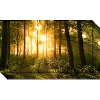 Canvas Art Gallery Wrap 'Light In The Forest' by Leif Londal 24 x 14-inch