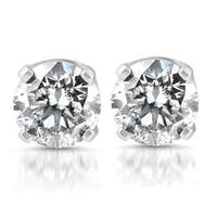 Bliss 14k White Gold 1/4 ct TDW Diamond Studs
