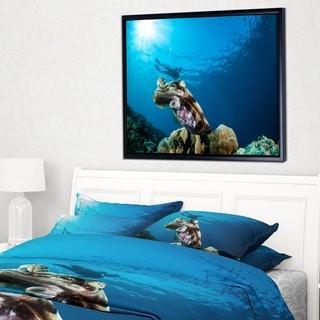 Designart 'Broadclub Cuttlefish Underwater' Large Seashore Framed Canvas Art Print