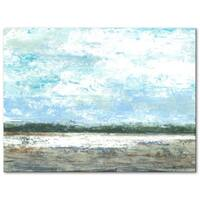 Coastal Marsh 30 x 40 Gallery Wrapped Canvas by Norman Wyatt Home