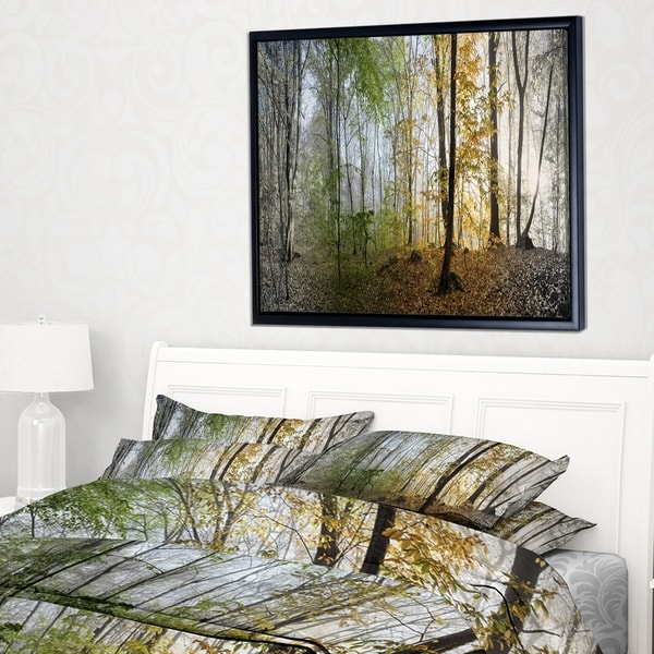 Designart 'Morning Forest Panoramic View' Landscape Photography Framed Canvas Print