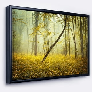 Designart 'Forest with Yellow Flowers' Landscape Photography Framed Canvas Print
