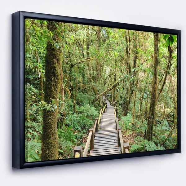 Designart 'Walk Way in Deep Forest' Landscape Photo Framed Canvas Art Print