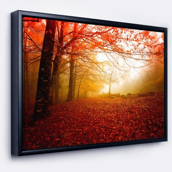 Designart 'Yellow Sun Rays in Red Forest' Landscape Photography Framed Canvas Print