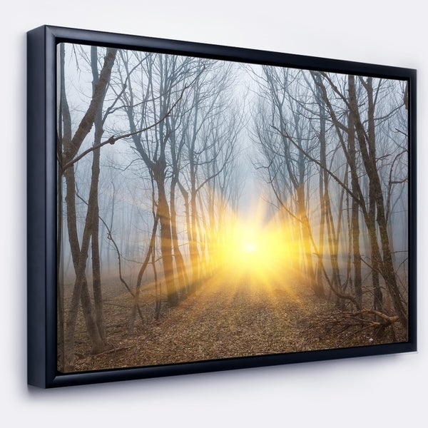 Designart 'Yellow Sun Rays in Misty Forest' Landscape Photography Framed Canvas Print