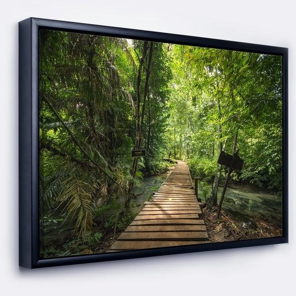 Designart 'Forest Way to Emerald Pool' Landscape Photo Framed Canvas Art Print